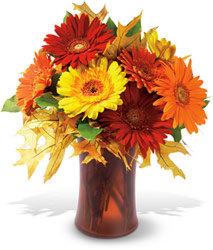 Autumn Gerbera from Maplehurst Florist, local flower shop in Essex Junction