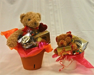 Plush and VT Chocolates from Maplehurst Florist, local flower shop in Essex Junction