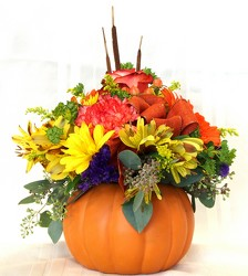Pumpkin Pleasures from Maplehurst Florist, local flower shop in Essex Junction