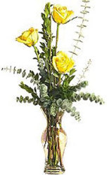 Three Yellow Roses in Vase from Maplehurst Florist, local flower shop in Essex Junction