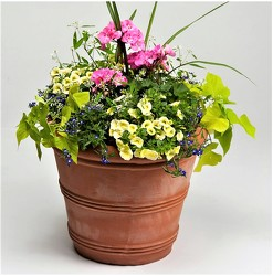Patio Planter from Maplehurst Florist, local flower shop in Essex Junction