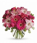 A Little Pink Me Up from Maplehurst Florist, local flower shop in Essex Junction