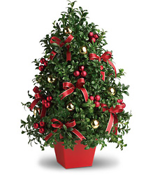 Deck the Halls Tree from Maplehurst Florist, local flower shop in Essex Junction