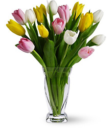 Tulip Splash from Maplehurst Florist, local flower shop in Essex Junction