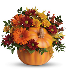 Country Pumpkin from Maplehurst Florist, local flower shop in Essex Junction