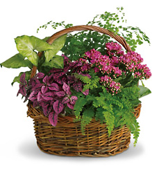 Secret Garden Basket from Maplehurst Florist, local flower shop in Essex Junction