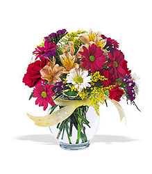 Joyful from Maplehurst Florist, local flower shop in Essex Junction