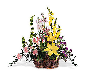Spring Splendor from Maplehurst Florist, local flower shop in Essex Junction