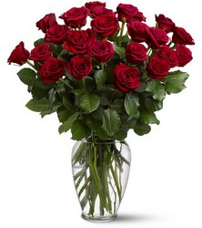Two Dozen Roses from Maplehurst Florist, local flower shop in Essex Junction
