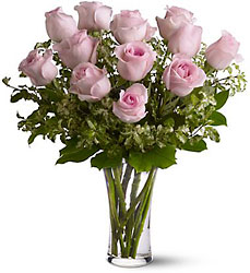 A Dozen Pink Roses from Maplehurst Florist, local flower shop in Essex Junction