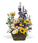 New Baby Basket & Bear from Maplehurst Florist, local flower shop in Essex Junction