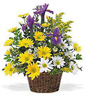 Vermont Meadow Basket from Maplehurst Florist, local flower shop in Essex Junction