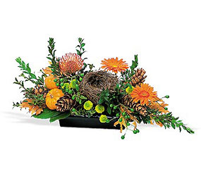 Visions of Autumn Centerpiece from Maplehurst Florist, local flower shop in Essex Junction