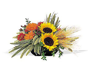 Sunflower Harvest from Maplehurst Florist, local flower shop in Essex Junction