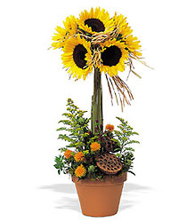 Sunflower Topiary from Maplehurst Florist, local flower shop in Essex Junction
